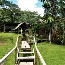 Campside 3