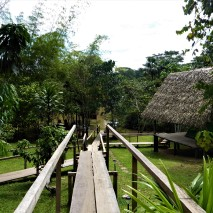 Campside 4