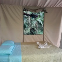Facility Tent 2