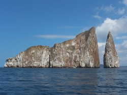 san cristobal, kicker rock (2)